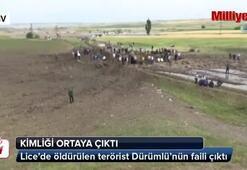 Lice'de öldürülen terörist Dürümlü'nün faili çıktı
