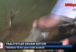 Uşakta göletlere 15 bin yavru balık bırakıldı