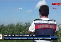 Jandarmadan drone ile havadan kenevir operasyonu