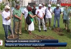 Atom Bombasına direnen ağaç Antalyada kök salacak