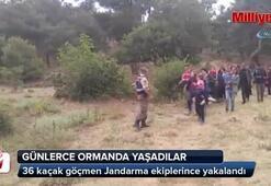 Kazdağlarında 36 kaçak yakalandı