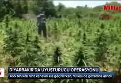 Diyarbakırda uyuşturucu operasyonu