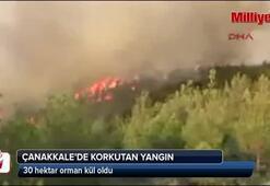 Çanakkalede korkutan orman yangını