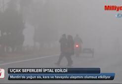 Mardin ve Şanlıurfada yoğun sis