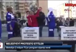 Belediye 2 milyon TLye penguen siparişi verdi