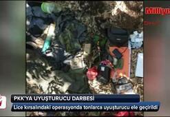 Lice kırsalında PKKya uyuşturucu darbesi
