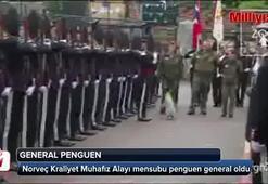 Penguen general oldu