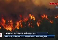 Fransa'da orman yangını insanları evlerinden etti