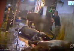 Kafalarına balyozla vurularak öldürdüler +18