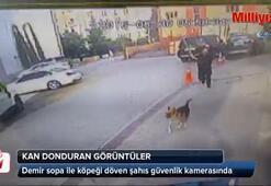 Demir sopa ile köpek döven şahıs kamerada