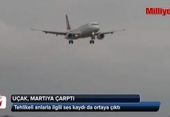 THY pilotu: Martıya çarptık