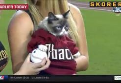 Huysuz Kedi maç açılışı yaptı