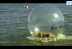 Balonun içinde kayboldu
