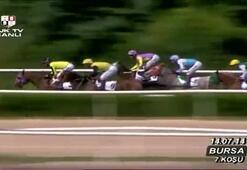 Bursa Hipodromu (30. Yarış Günü) 7. Koşusu