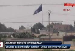 IŞİD aylardır Türkiye sınırında