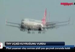 THY uçağı kuyruğunu vurdu