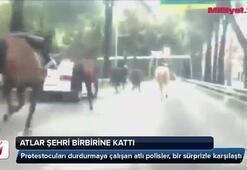 Atlar şehri birbirine kattı