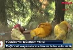 Türkiyenin ciğerleri yandı