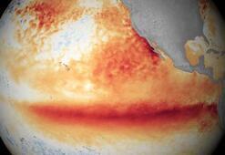 Dünya Meteoroloji Örgütünden El Nino uyarısı