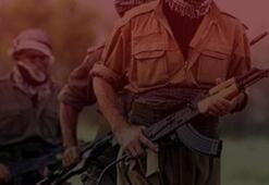 Son dakika: PKKlı terörist her şeyi itiraf etti Sabotajcılar...