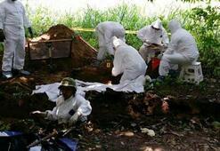 Meksikada toplu mezardan 166 kafatası çıktı