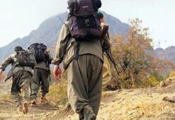 Kırmızı Bültenle aranan PKKlı terörist Bulgaristanda yakalandı