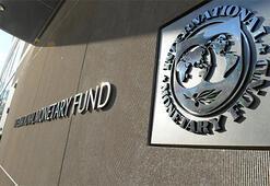 IMFden Arjantine yeşil ışık