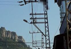 Adanada kanınızı donduracak olay Elektrik direğine tırmanıp...
