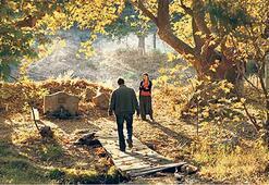 Türkiye'nin Yabancı Dilde Oscar adayı 'Ahlat Ağacı'