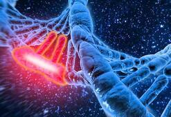 Genetikçiler, çocukların görünümünü önceden saptayabilecek