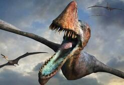 Yeni bir uçan dinozor türü keşfedildi