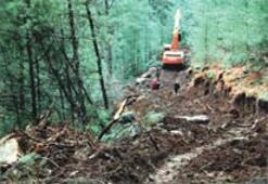 Marmaris'te maden kavgası yeniden başlıyor