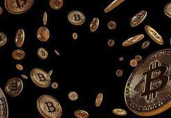 22 yaşındaki Bitcoin milyoneri dolandırıcılara 35 milyon dolar kaptırdı