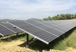 5 bin hanenin elektrik ihtiyacı güneş enerjisiyle karşılanacak
