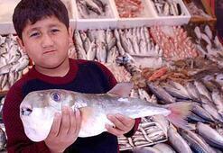 Bu balığı sakın yemeyin