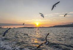 İstanbula gelen ziyaretçi sayısında rekor