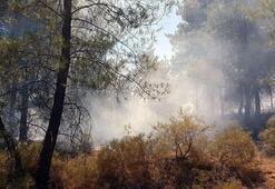Muğlada yıldırım düştü, orman yangını çıktı
