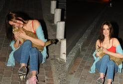 Mekan çıkışı kediye sarıldı