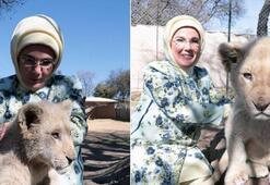 Emine Erdoğan Güney Afrikada yavru aslanları sevdi