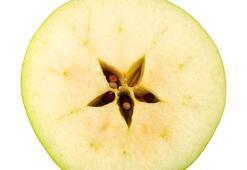 Çekirdekleri zehirleyebilen meyveler