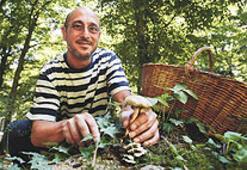 """Belgrad Ormanı kilosu 100 avroluk mantarla dolu"""