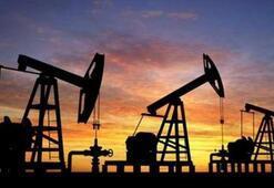 ABDnin ticari ham petrol stokları beklentilerin aksine yükseldi