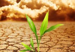 İklim değişikliği dünyayı vuracak
