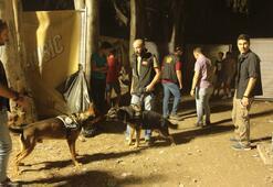 Ünlü sanatçıların sahne aldığı festivale polis baskını