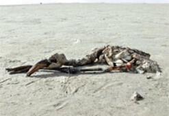 'Tuz Gölü'nü  küresel ısınma  değil, DSİ bitirdi