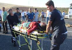 Şanlıurfa'da tarım işçilerini taşıyan minibüs devrildi: 11 yaralı
