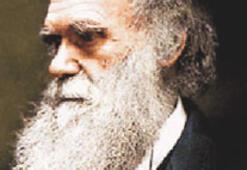 İngiliz Kilisesi'nden Darwin'e özür