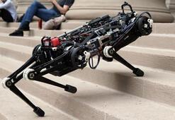 MITnin Cheetah 3 adlı robotu artık merdivenlerden de çıkabiliyor