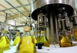 Japonyaya zeytinyağı ihracatı yüzde 520 arttı