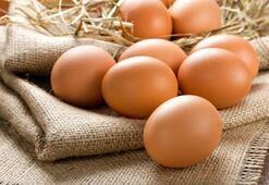 Yumurtanın faydaları nelerdir